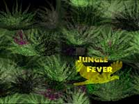 Jungle Fever Thumbnail
